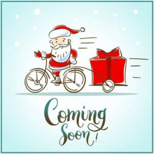 NEW Christmas 21